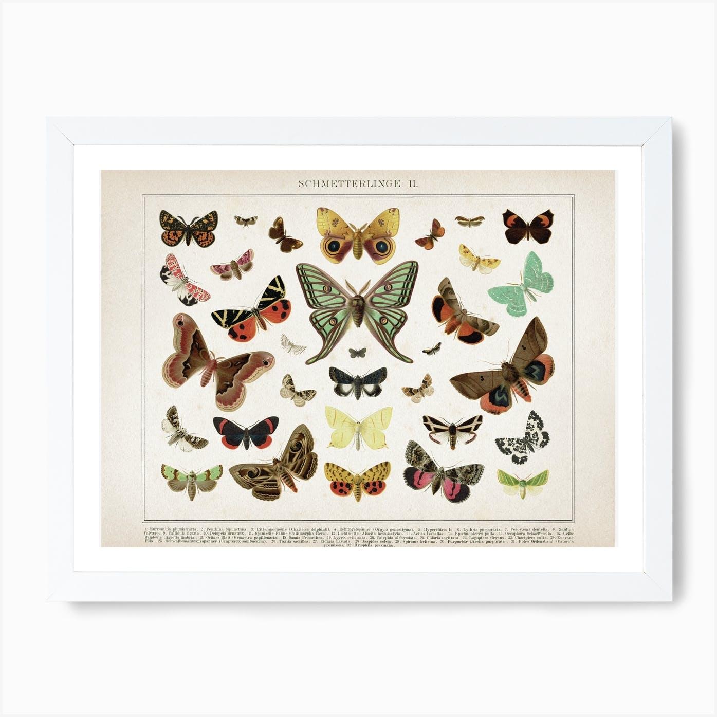 Vintage rosa Canvas Schmetterlinge