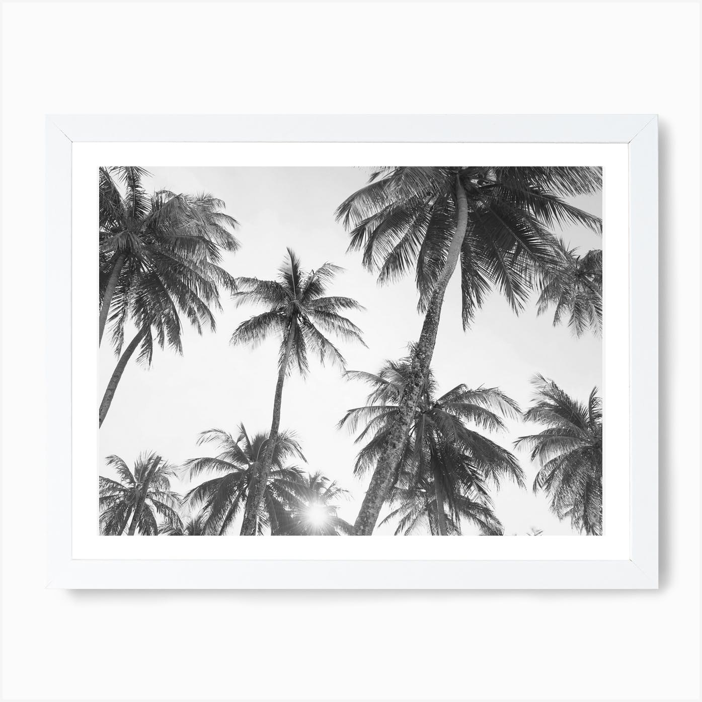 Palm Trees Black And White Wall Art Print Free Shipping Fy