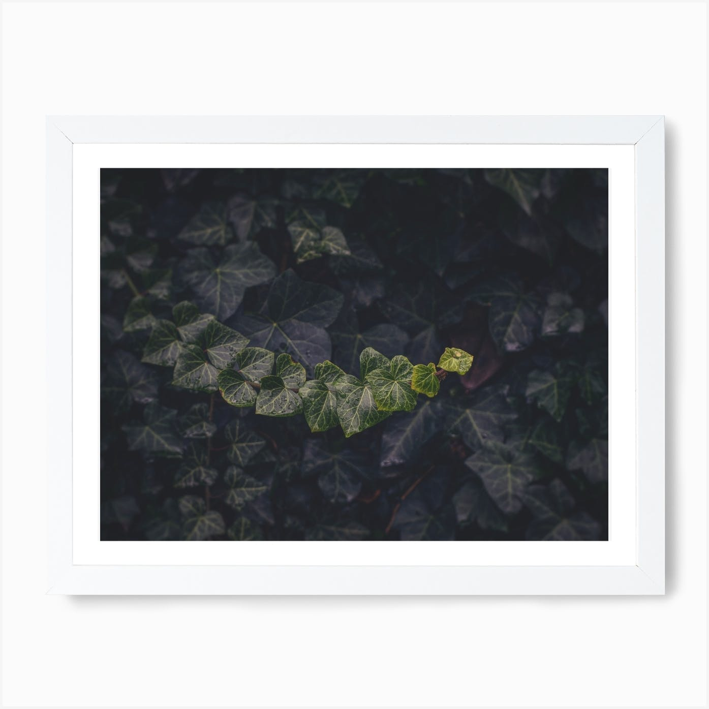 Shades Of Green Art Print By Nur Mut Fy