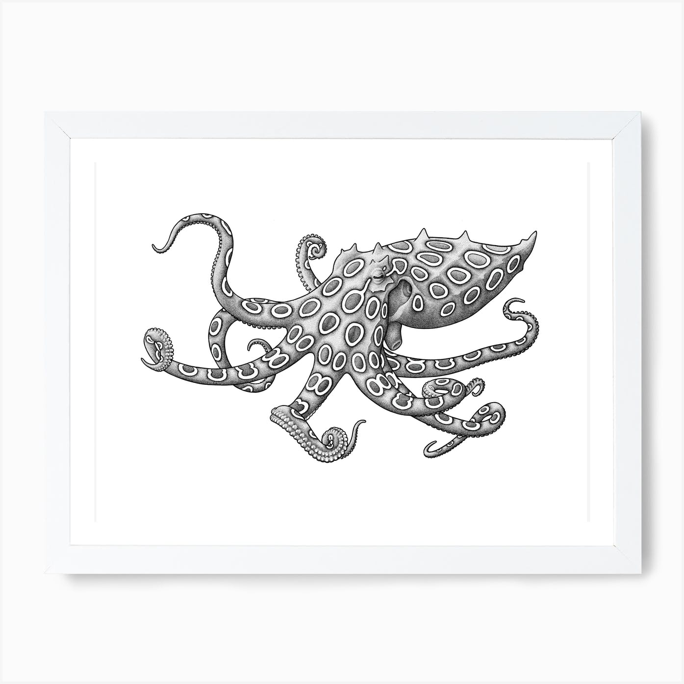 Canvas Two-Spotted Octopus Art print POSTER