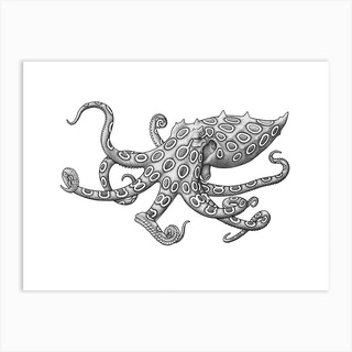 Blue Ringed Octopus Art Print