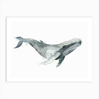 Sea Life Blue Whale Art Print