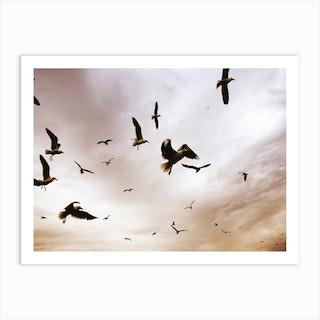 Flight And Freedom 02 Art Print