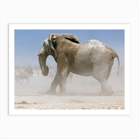 Bull Elephant Etosha Art Print