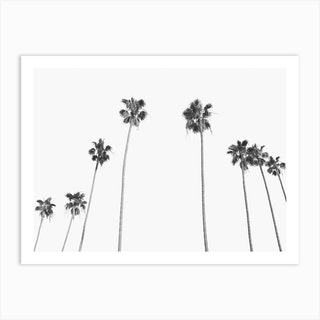 Palm Trees Vintage Landscape Art Print