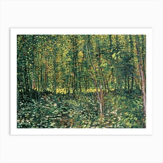 Trees And Undergrowth, 1887 by Vincent van Gogh Art Print
