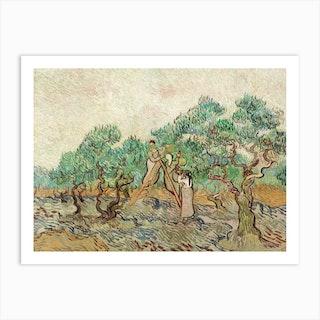 The Olive Orchard, Vincent Van Gogh Art Print