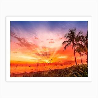 Bonita Beach Idyllic Sunset Art Print