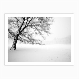 Lonely Central Park Tree Art Print