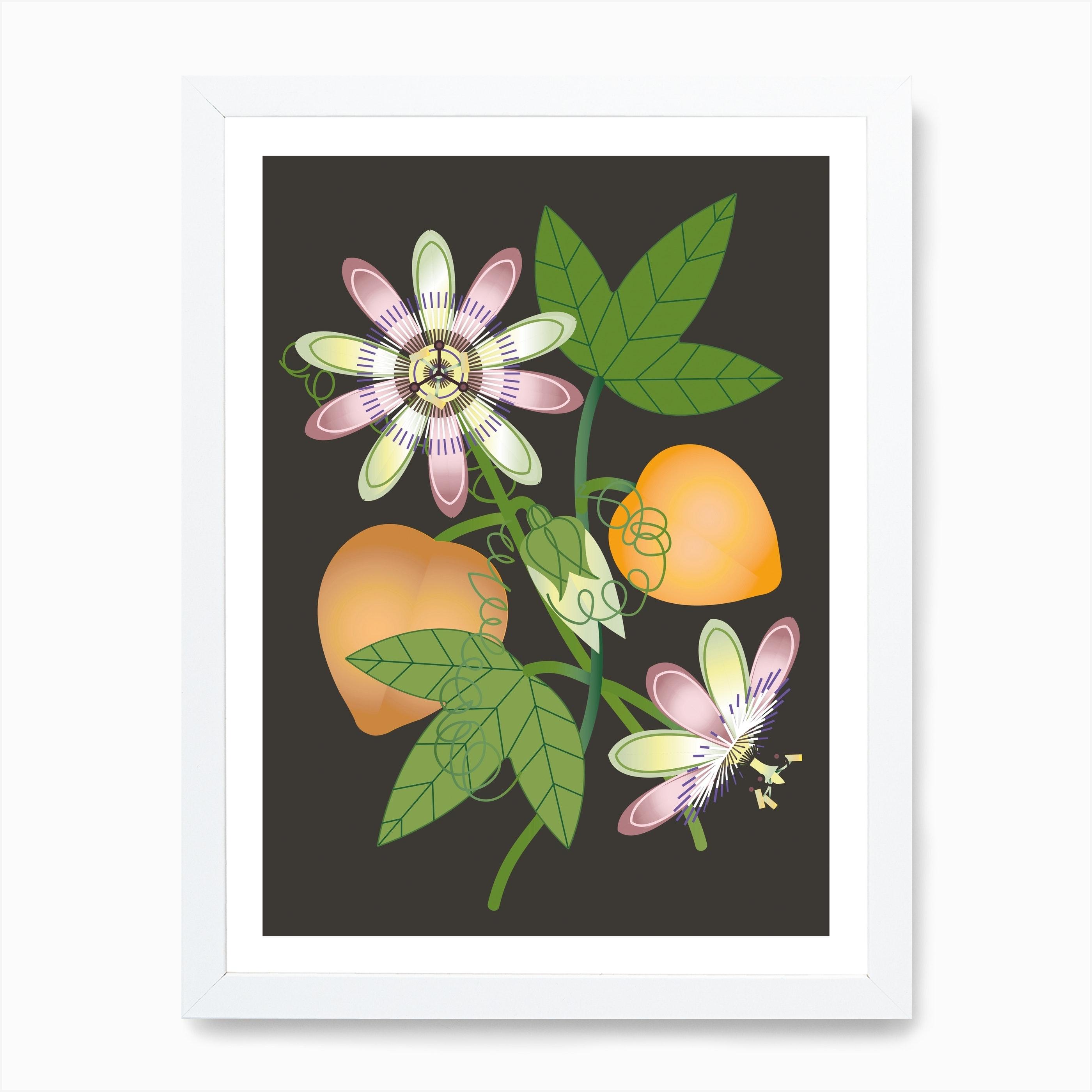 Passiflora Poster I Art Print By Cat Fenton Design Fy