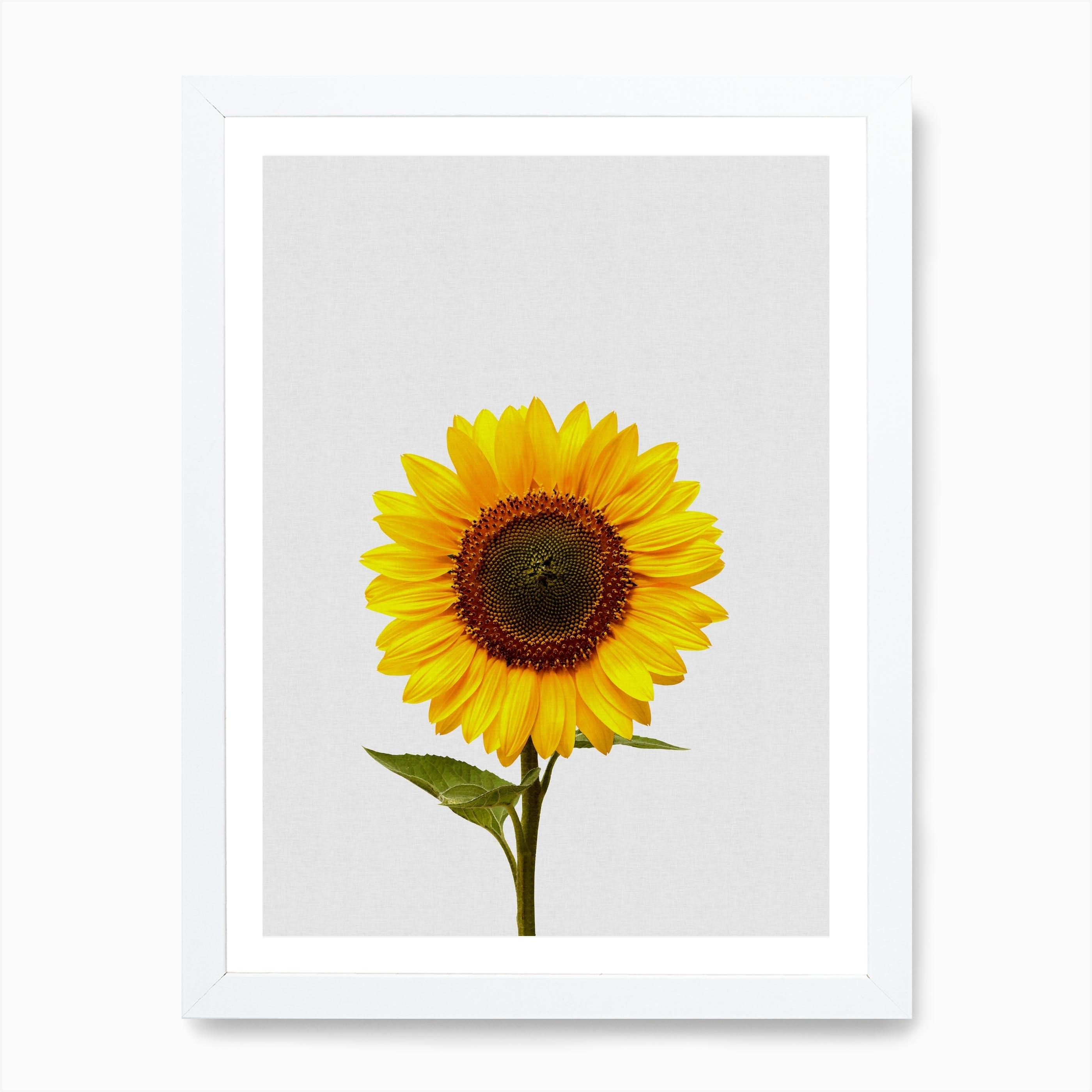 Sunflower Beauty Art Print Home Decor Wall Art Poster
