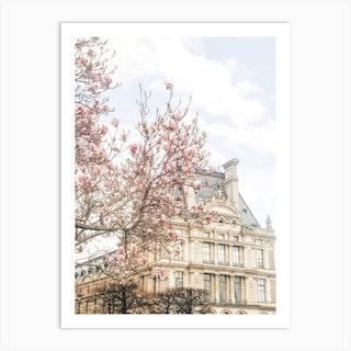 Paris Magnolia 1 Art Print