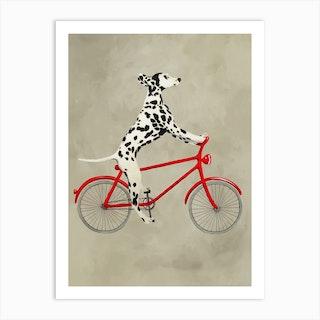Dalmatian On Bicycle Art Print