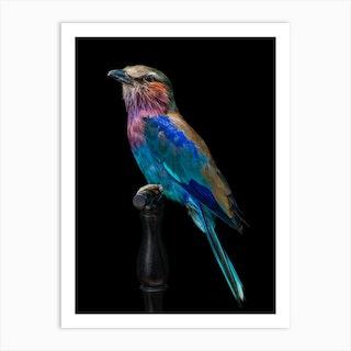 Purple Singing Birds Art Print