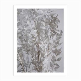 White Sunny Leafs Art Print