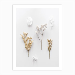 Stones And Branches 3 Art Print
