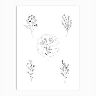 Botanical Magic Art Print