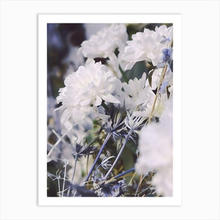 Blue And White Floral Art Print