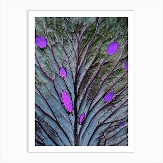 Cabbage Peacock Art Print