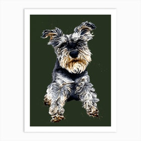 Ollie The Schnauzer Art Print