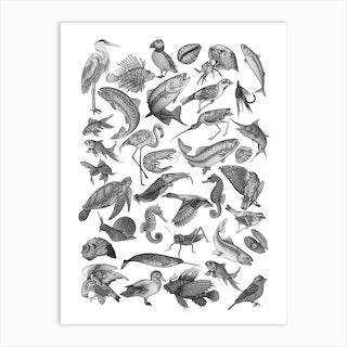 Animal Flash Art Print