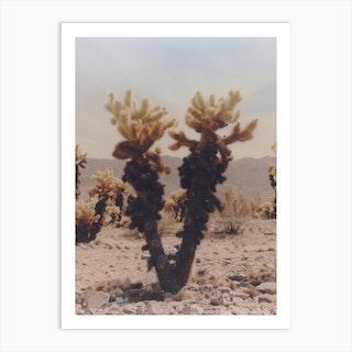 Cactus Portrait 01 Art Print