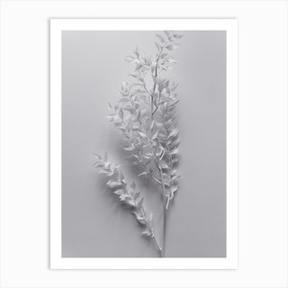 Minimal White Branch Art Print