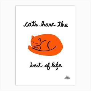 Cats Life Art Print