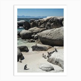 Boulders Beach Art Print