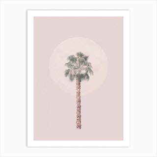 Pastel Pink Palm Tree Art Print