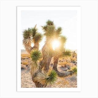Joshua Tree Sunrise Art Print