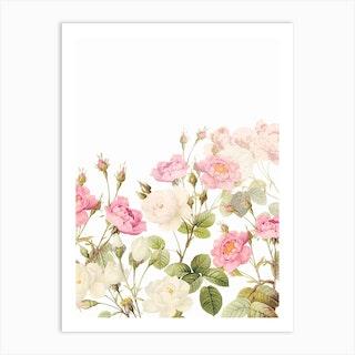 Summer Redoute Vintage Roses Garden Art Print