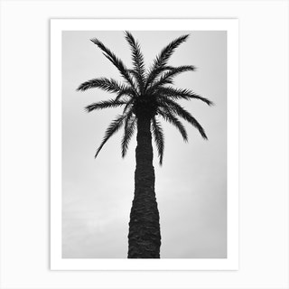 Palm Love Art Print
