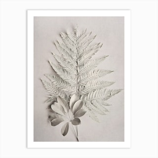 Alabaster Forest 4 Art Print