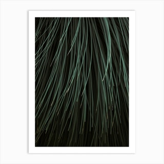 Natures Stripes Art Print