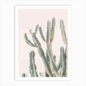 Sunset Cactus I Art Print