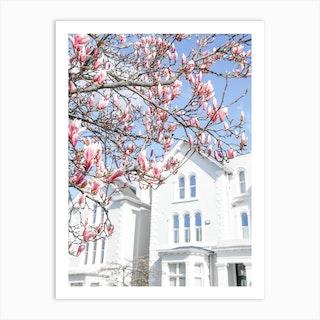 Blue Sky Magnolia Art Print