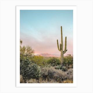 Desert Sunset 1 Art Print