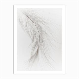 White Feather 3 Art Print