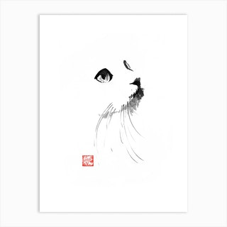 Cat In White Art Print