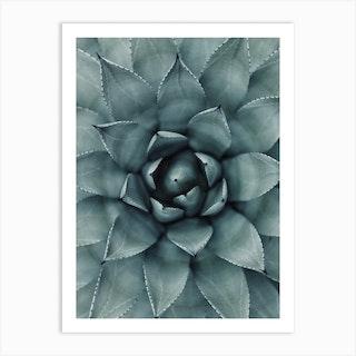 Hypnotic Agave Plant Art Print
