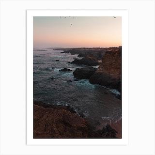 Seagulls And Cliffs Art Print