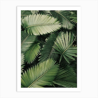 Pink Leaves Jungle Art Print