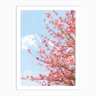 Bright Pink Blossom Art Print