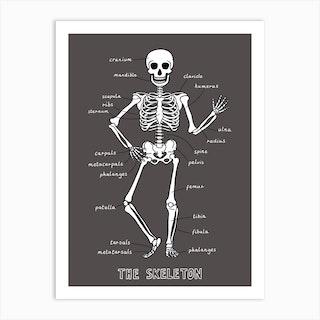 The Skeleton In Black Art Print