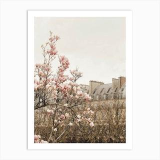 Paris Magnolia 2 Art Print