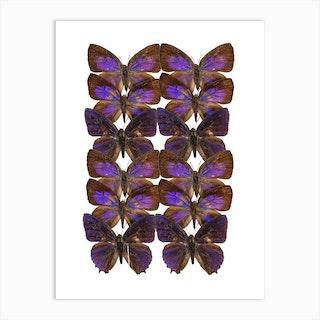 Two Rows Purple Butterflies Art Print