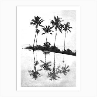 Palm Tree Reflections Black Art Print