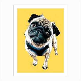 Teddy The Pug Art Print