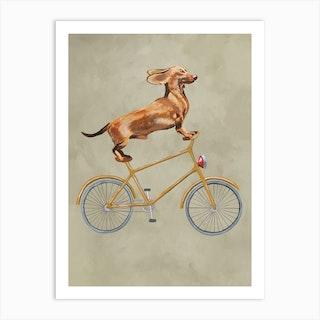 Dachshund On Bicycle Art Print